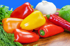 Peppers of different colors Stock Photos