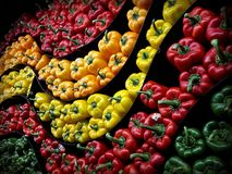 Peppers on display. Assortment of peppers on display in grocery store Stock Photography