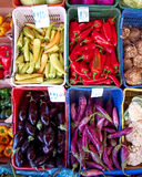 Peppers and eggplants Royalty Free Stock Image