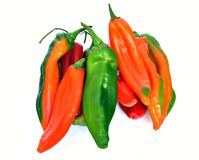 Peppers elongated Stock Image