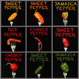Peppers on a fork Stock Images