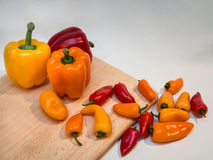 Peppers Galore Royalty Free Stock Photography