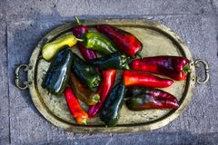 Peppers from the garden. Royalty Free Stock Photos