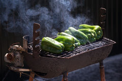 Peppers on grill. Peppers roasting on rusty old charcoal grill Stock Photos