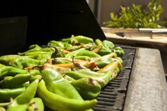 Peppers. Grilled summer garden harvest of hatch valley chili peppers, cowhorn peppers, bell peppers, serrano peppers and cayenne peppers on the barbecue Stock Photo