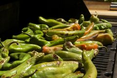 Peppers. Grilled summer garden harvest of hatch valley chili peppers, cowhorn peppers, bell peppers, serrano peppers and cayenne peppers on the barbecue Royalty Free Stock Image