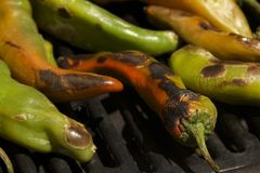 Peppers. Grilled summer garden harvest of hatch valley chili peppers, cowhorn peppers, bell peppers, serrano peppers and cayenne peppers on the barbecue Royalty Free Stock Photography