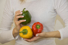 Peppers in hands Stock Image