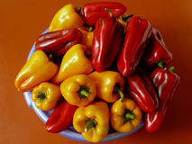 Peppers harvest Stock Photos