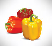 Peppers Illustration Royalty Free Stock Image