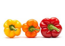Peppers In A Row On White Background Stock Images