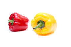 Peppers isolated. On the white Royalty Free Stock Photography
