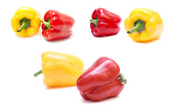 Peppers isolated. Collection of an isolated peppers Royalty Free Stock Images