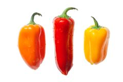 Peppers Isolated On White. Three Fun Peppers Isolated On White Royalty Free Stock Image