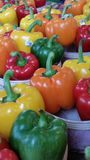 Peppers! stock photography