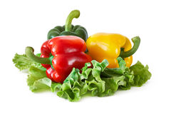 Peppers on lettuce leaves Stock Photos