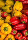 Peppers on the market Royalty Free Stock Photos