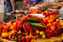Peppers at the Market Royalty Free Stock Image