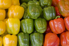 Peppers mix Royalty Free Stock Images