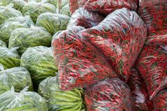Peppers are packed in bags. royalty free stock image