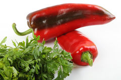 Peppers and parsley whit white background Stock Image
