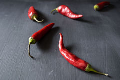 Peppers. Red chili peppers on a black background Stock Photos