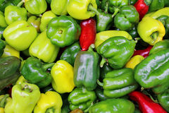 Peppers. Red, yellow and green bell peppers at a market Royalty Free Stock Photo