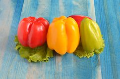 Peppers red yellow green on blue wooden background royalty free stock photography