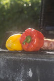 Peppers. Red and yellow pepper being barbequed Stock Photography