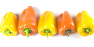 Peppers in a row Royalty Free Stock Photos