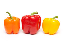 Peppers in a row on white background Royalty Free Stock Image