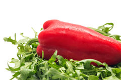Peppers with rucola Royalty Free Stock Images