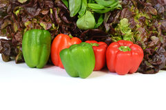 Peppers and salad Royalty Free Stock Images