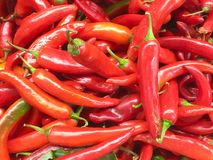 Peppers for sale Royalty Free Stock Photo