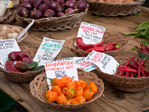 Peppers for sale at an outdoor market Royalty Free Stock Photography