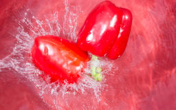 Peppers splashing into water Stock Photo