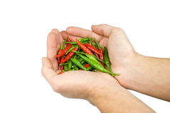 Peppers strong in his hands Royalty Free Stock Photos