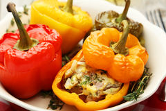 Peppers stuffed with mea Stock Image