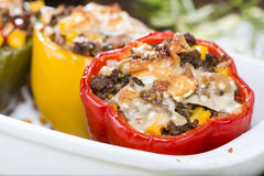 Peppers stuffed with minced meat Stock Images