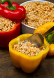 Peppers stuffed with rice Royalty Free Stock Image