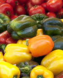 Peppers and tomatoes Stock Photos