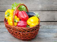 Peppers with tomatoes, lettuce and eggplant in basket on wooden background Royalty Free Stock Photo