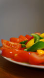 Peppers & Tomatoes. A shot of diced red, green and yellow peppers and tomatoes on a plate with a grey background Royalty Free Stock Image