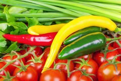 Peppers, tomatoes with spring onions Stock Image