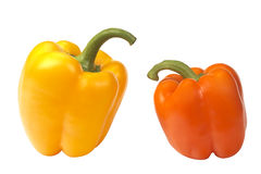 Peppers. Two peppers isolated on a white background royalty free stock images