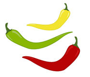 Peppers, vector Stock Photo