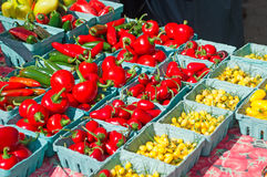 Peppers and vegetables at Union Square farmers greenmarket Royalty Free Stock Photos