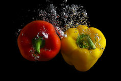 Peppers in water Stock Image