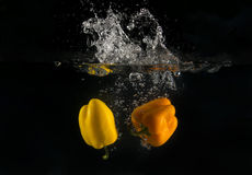 Peppers in water Stock Photography