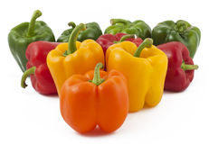Peppers on white background. Green, yellow, orange and red peppers on white background Royalty Free Stock Photo
